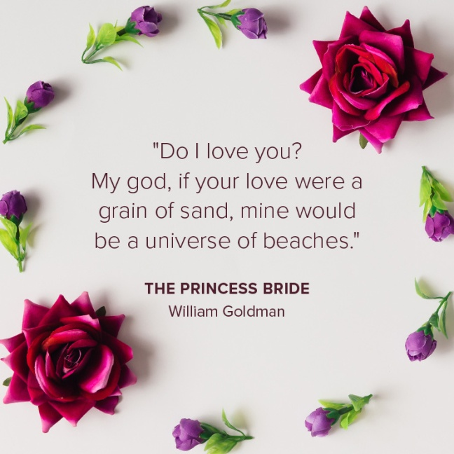 "Quote from ""The Princess Bride"" by William Goldman"