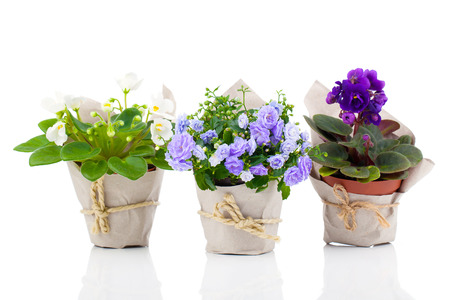 Group potted flowers on tables as centerpieces. Then at the end of your wedding reception, your guests can take them home.